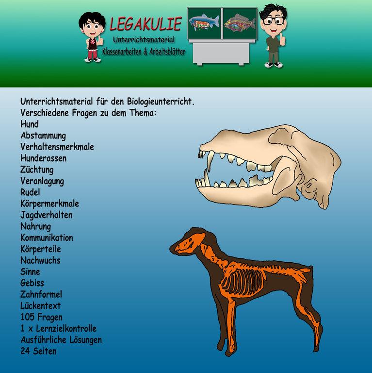 Biologie Hund Schularbeit Klassenarbeit Lernzielkontrolle
