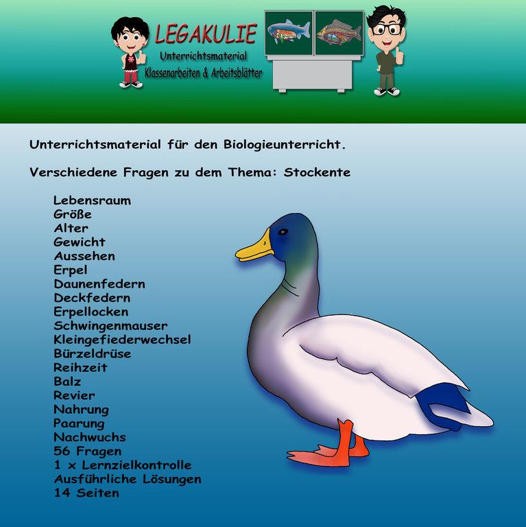 Attractive Biologie Arbeitsblatt Pdf Pictures - Kindergarten ...