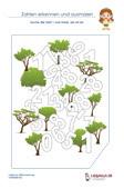 Zahlen Erkennen Mathematik 1.Klasse PDF