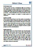 Diktate Vereinfachte Ausgangsschrift Deutsch PDF