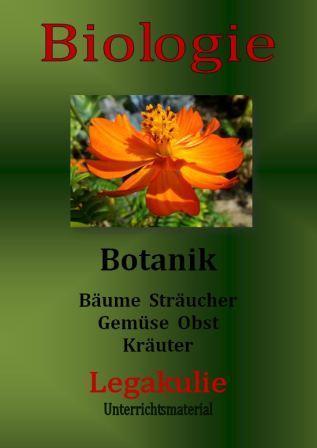 Biologie-Klassenarbeiten-Schularbeiten-Arbeitsblaetter-Botanik